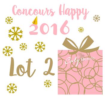 Concours Lot 2