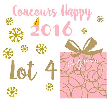 Concours Lot 4