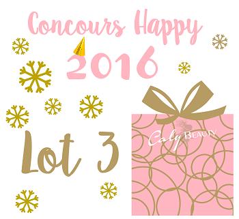 Concours Lot3